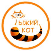 Рыжий кот школа дизайна официальный сайт